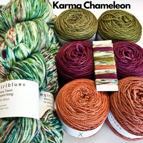 Slipstravangza Merino Twist kit by Cowgirlblues Karma Chameleon